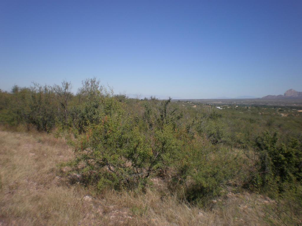 Terreno por un Venta en Beautiful Panoramic Views Parcel 5 Vista De Torres Tubac, Arizona 85646 Estados Unidos