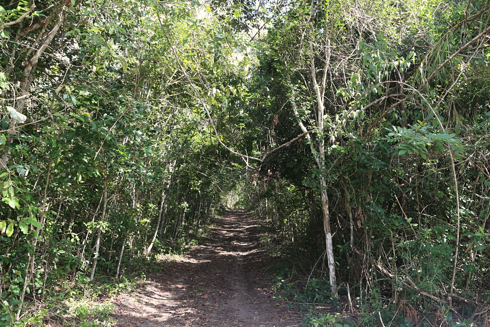 Additional photo for property listing at Cayo Dreams Other Cayo, Cayo 伯利兹