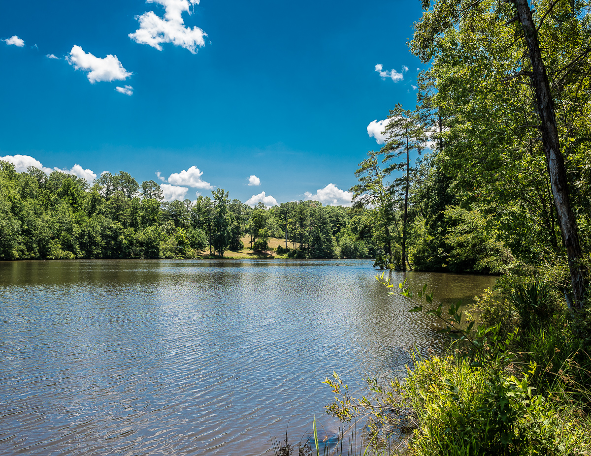 Property For Sale at Magnificent 50.5 Acres