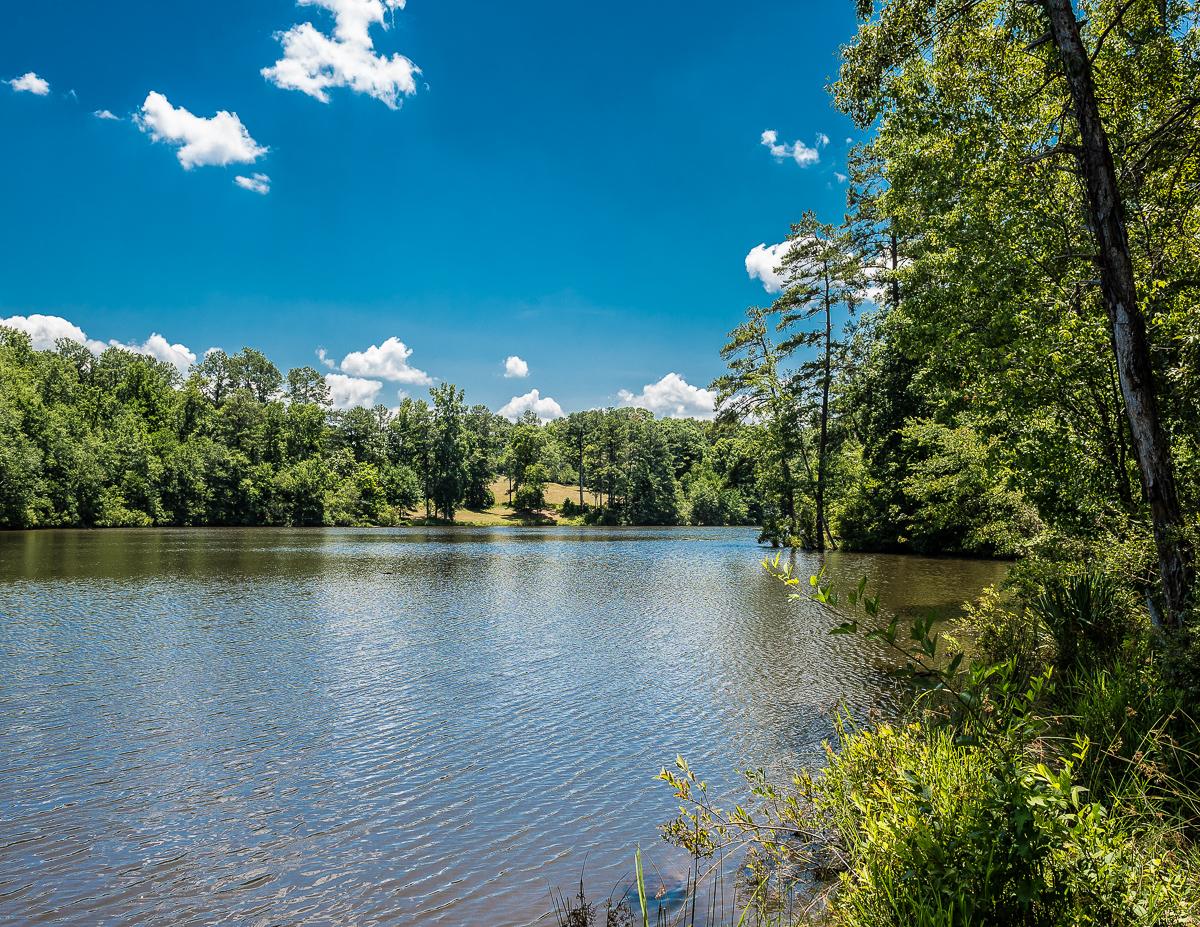 Nông trại / Trang trại / Vườn vì Bán tại Magnificent 50.5 Acres 0 Bridger Point Road Fayetteville, Georgia GEORG Hoa Kỳ