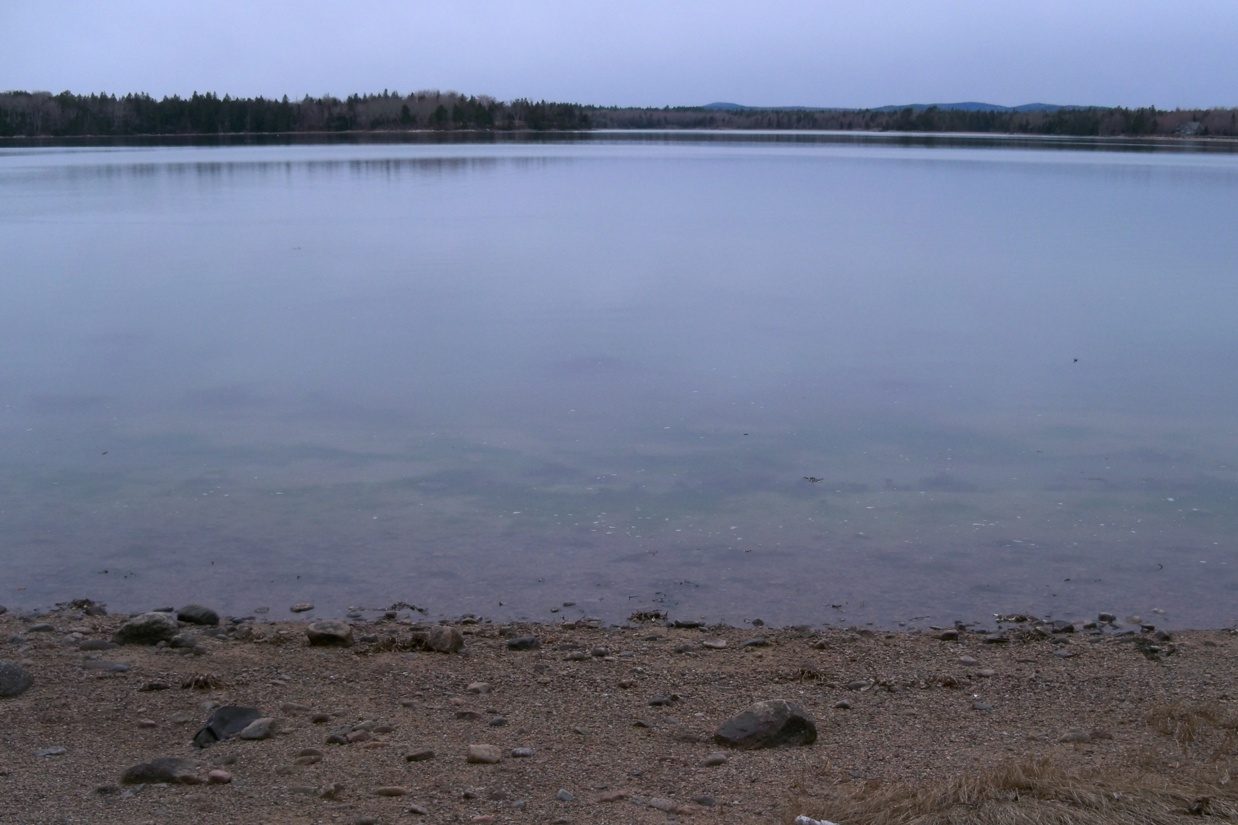 Land for Sale at Seaside Farm Faulkner Drive Steuben, Maine, 04680 United States