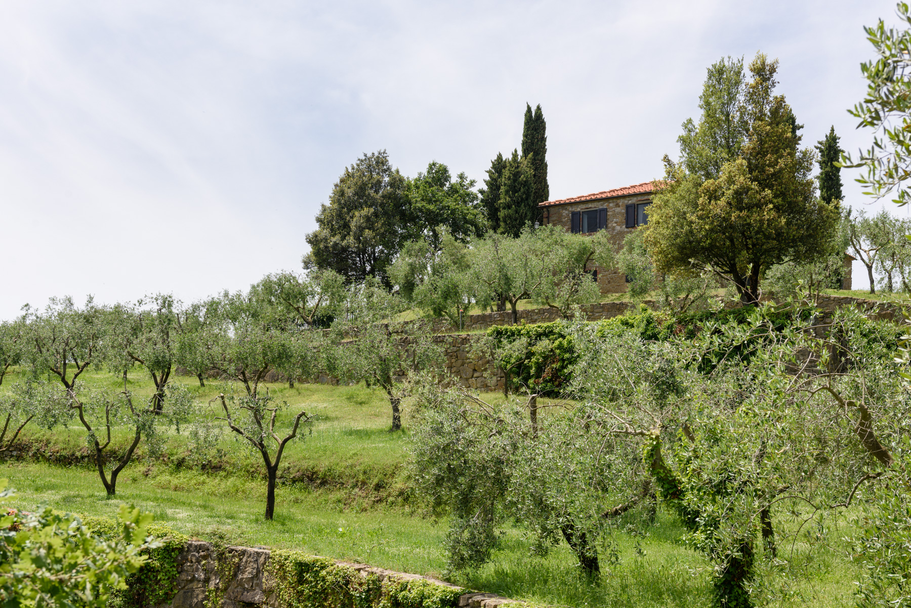 Additional photo for property listing at Country retreat in Chianti Aretino Pergine Valdarno, Arezzo Italy