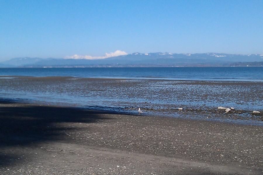 Land for Sale at Mabana Waterfront Lot S Camano Dr Camano Island, Washington, 98282 United States