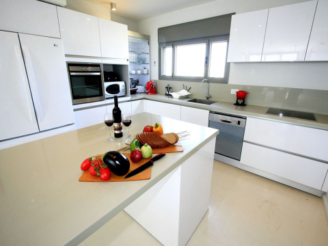 Additional photo for property listing at Tel Aviv Luxurious Duplex Penthouse Tel Aviv, Israel Israël