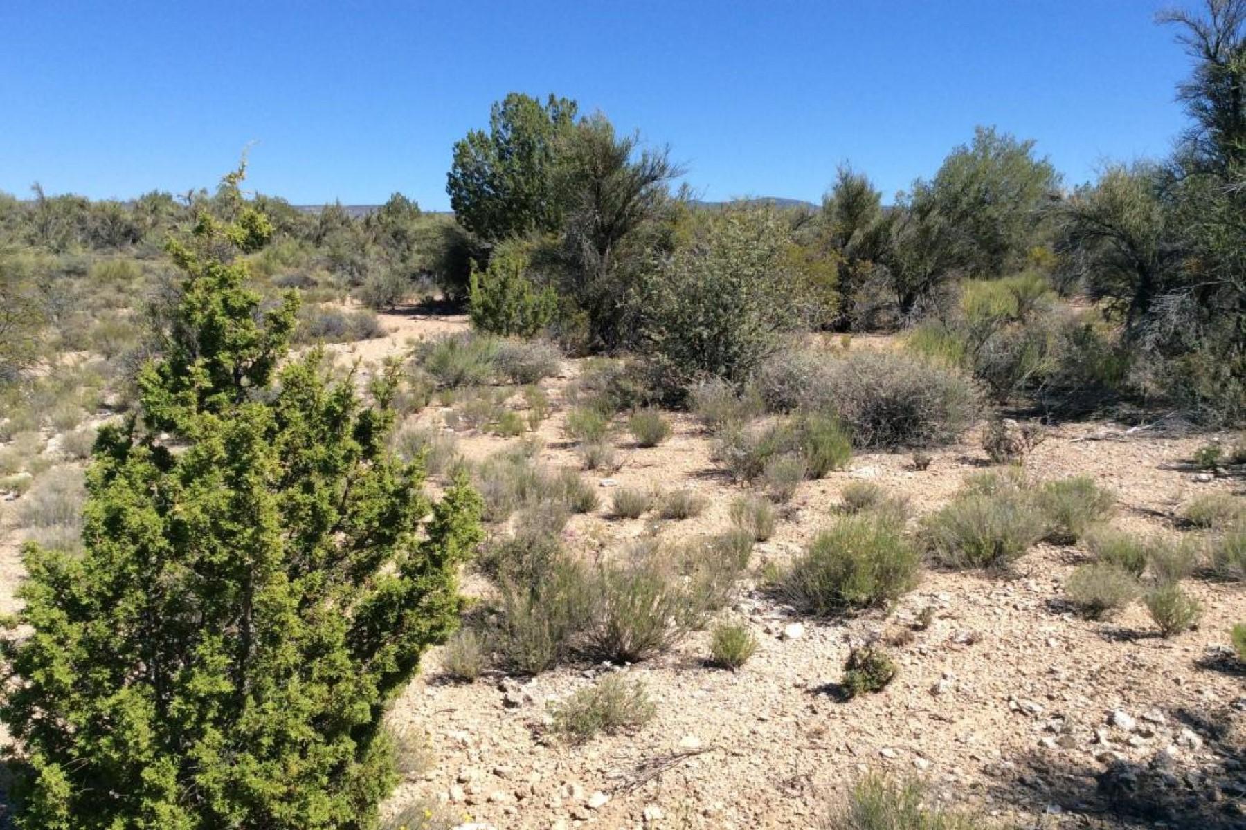 Terreno para Venda às Exceptional level lot on a cul-de-sac 6625 N Falcon View Drive Rimrock, Arizona, 86335 Estados Unidos