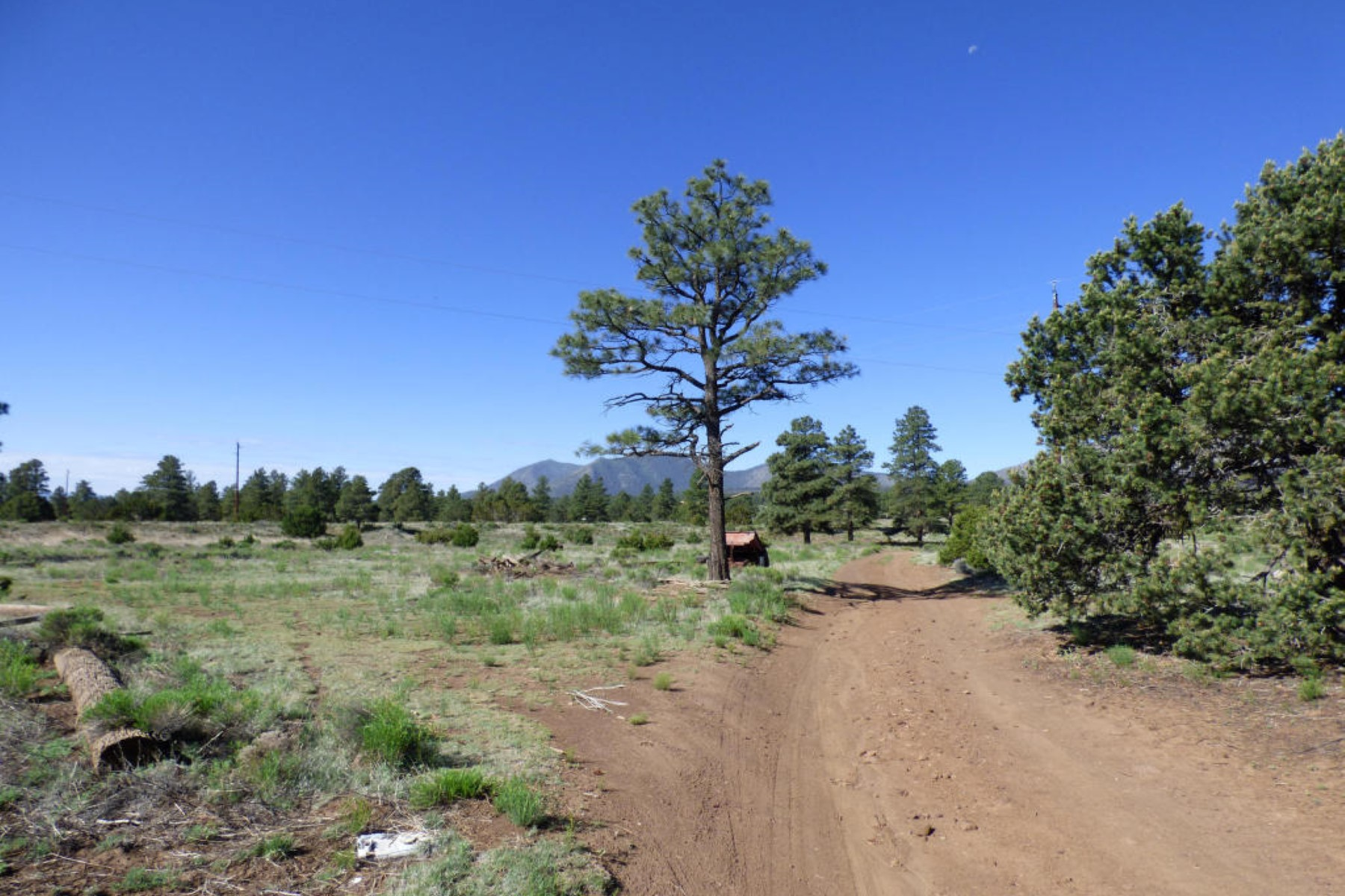 Land for Sale at This is the remaining part of the original ''Brandis Homestead'' land. 5290 E Pumpkin Patch RD Flagstaff, Arizona, 86004 United States