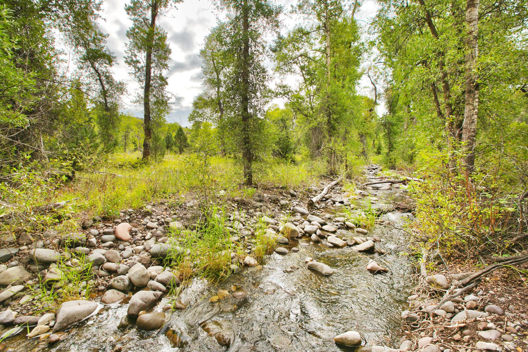 Property For Sale at 18 Plus Wooded Acres with Creek