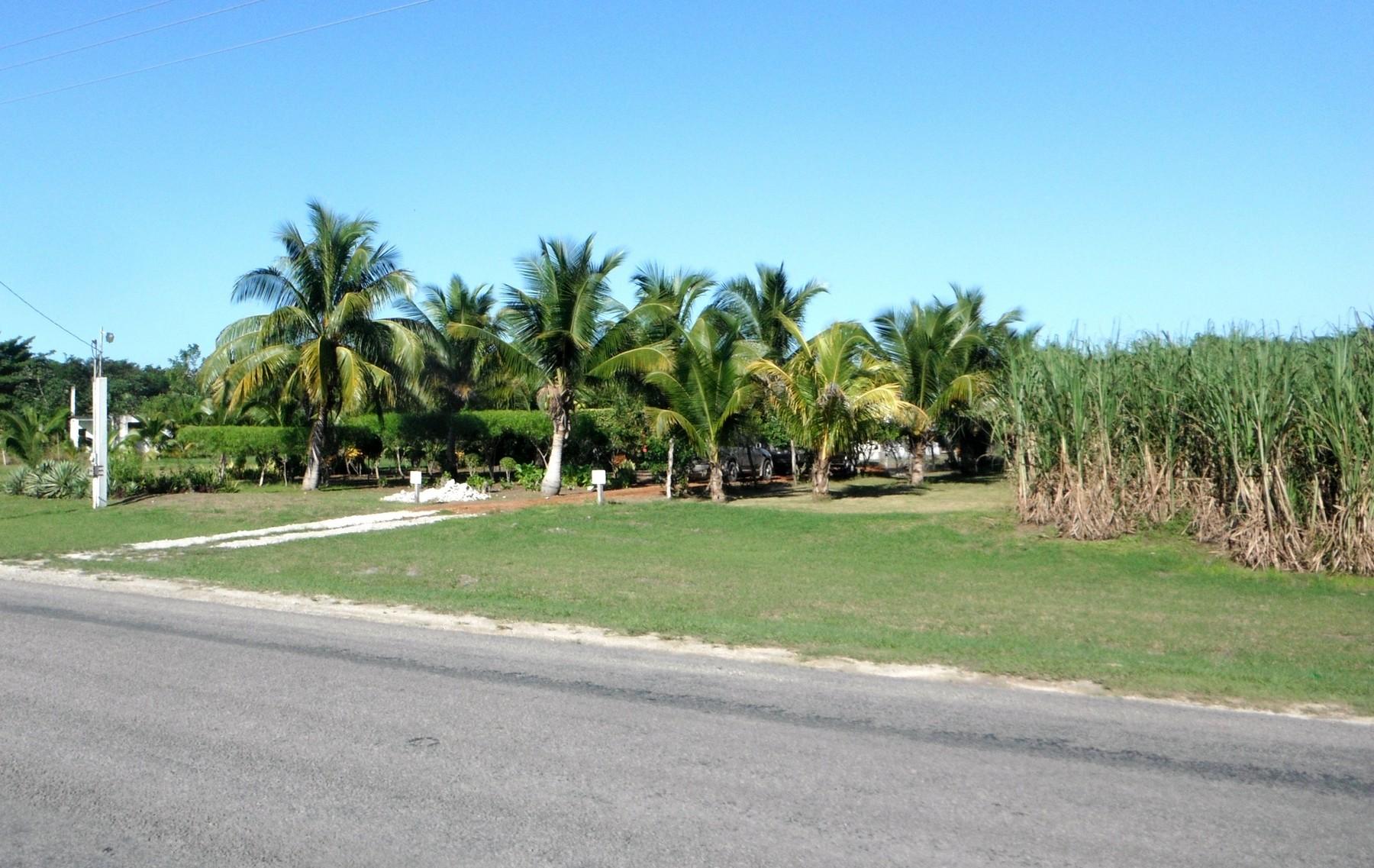 その他の住居 のために 売買 アット Corozal Casa Cocom Corozal, Corozal, ベリーズ