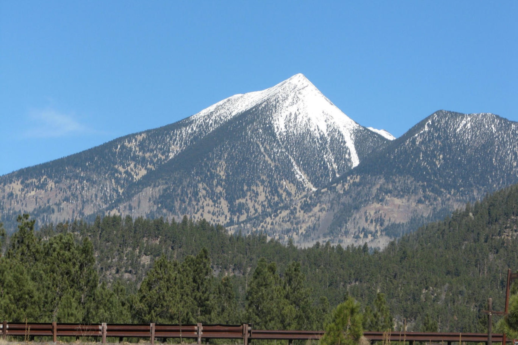Property For Sale at 6.09 heavily treed acres in Lockett Ranches.