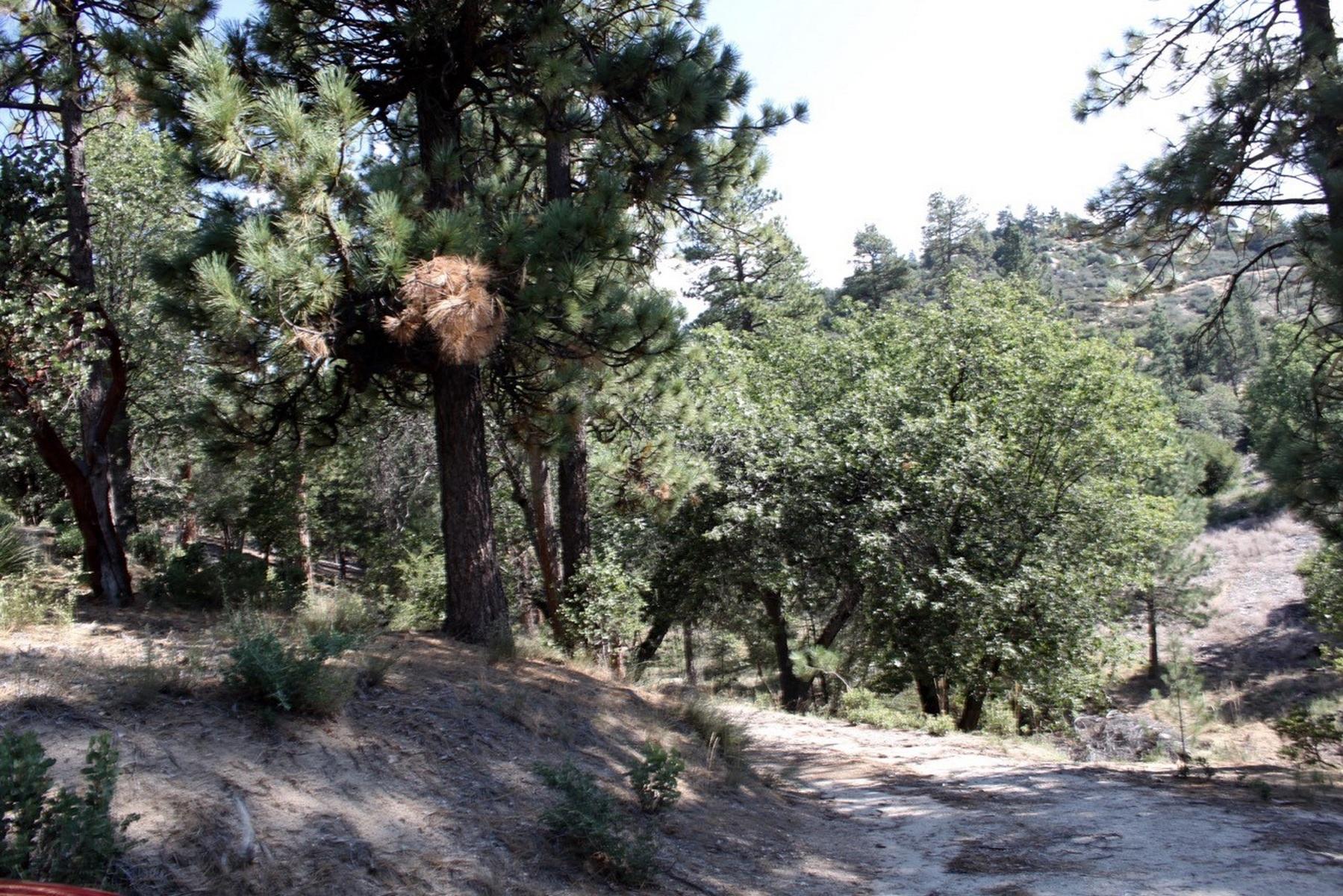 Land for Sale at Idylwild Acreage State Hwy 243 Idyllwild, California 92549 United States