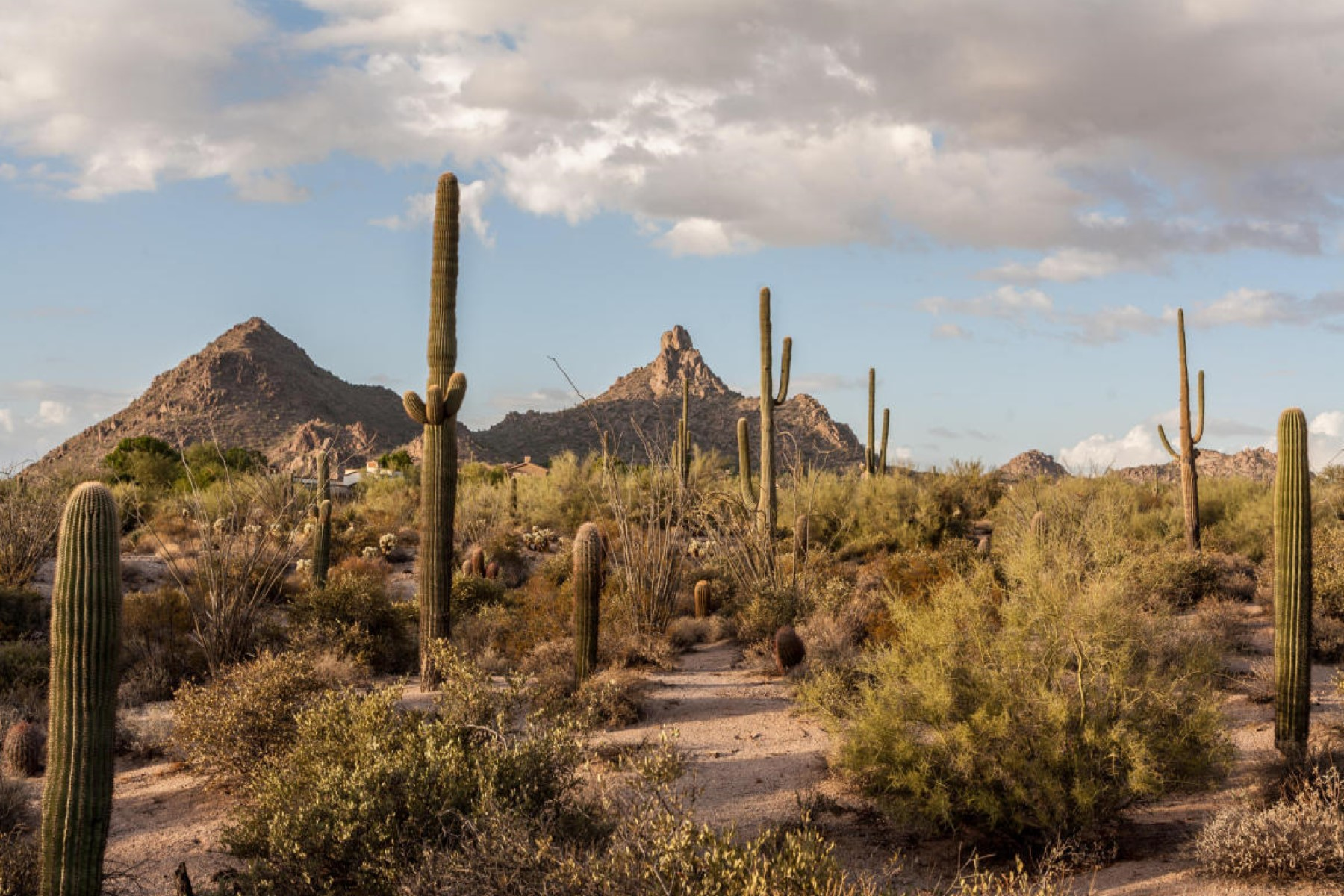 Land for Sale at Premier 4.43 acres in The Peak 9701 E Happy Valley Rd #20 Scottsdale, Arizona 85255 United States