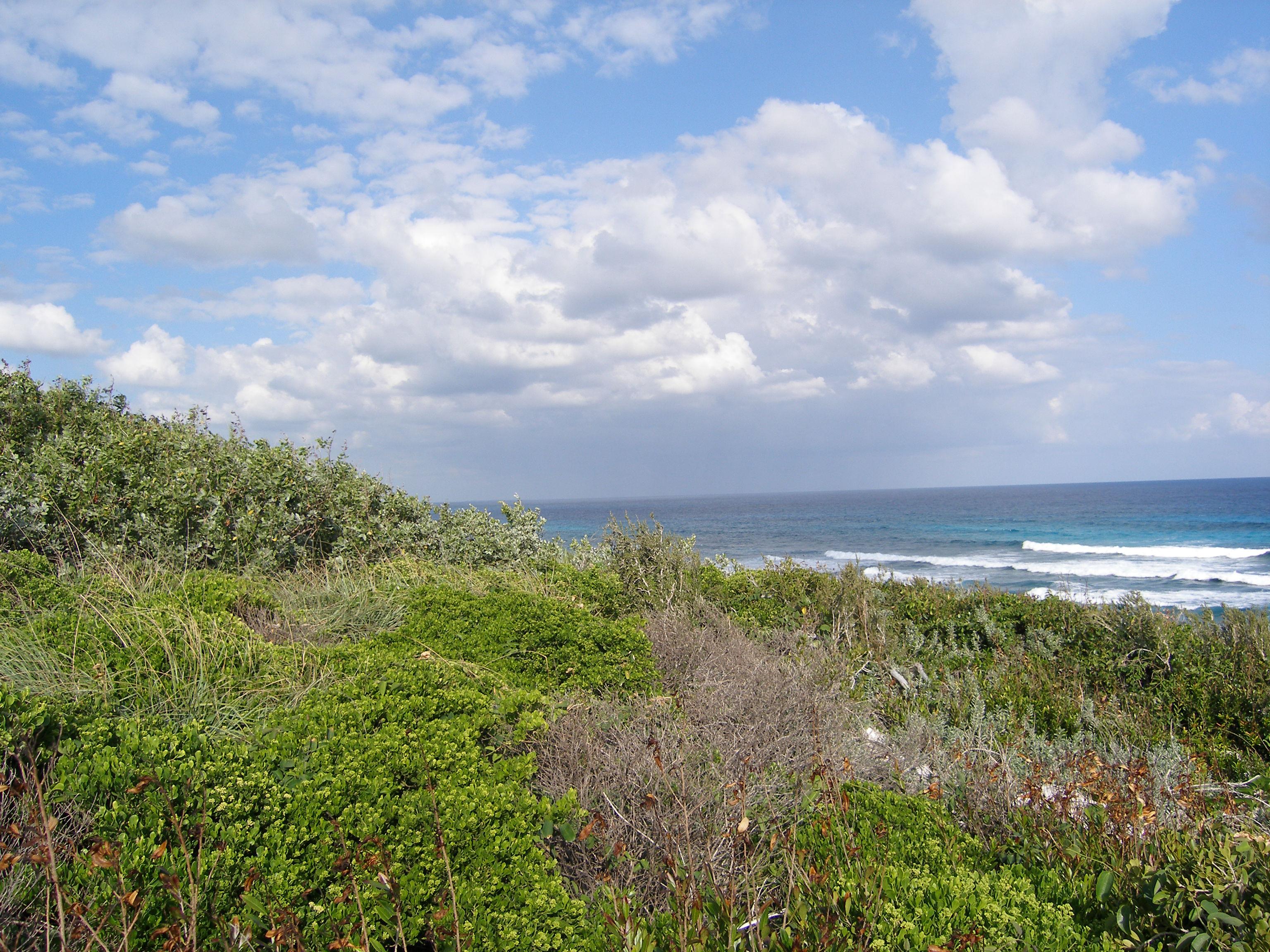 Terreno para Venda às Double Lot in Rainbow Bay Rainbow Bay, Eleuteria, Bahamas