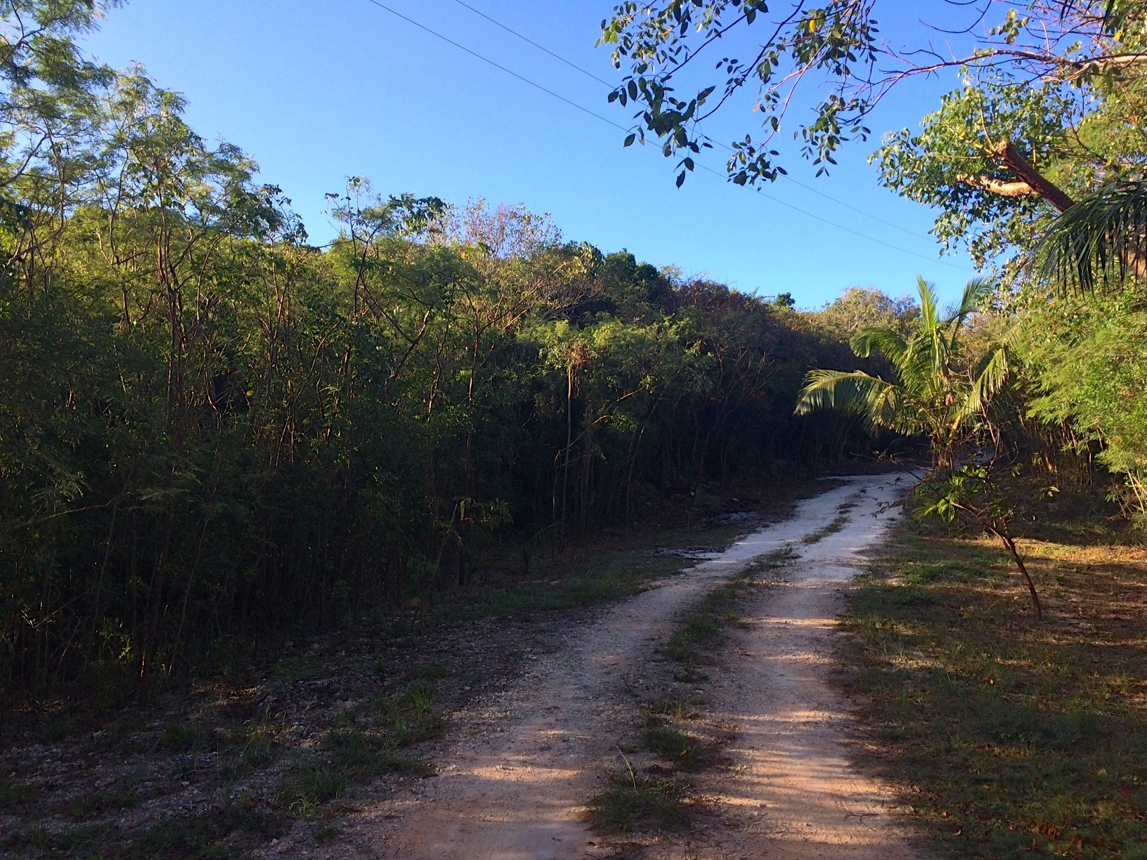 Additional photo for property listing at Generous Lot with Great Views Gregory Town, Eleuthera Bahamas