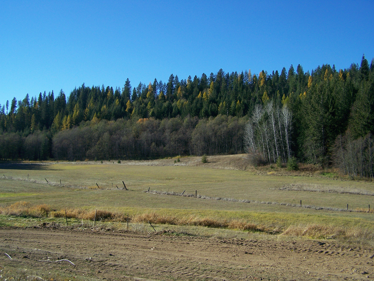 Land for Sale at Timber Haven 16.5 Acres Timber Haven Road Sagle, Idaho 83860 United States