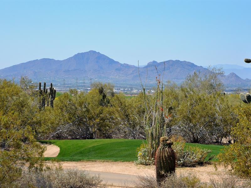 Property For Sale at Spectacular Homesite on the Raptor Golf Course in Guard Gated Grayhawk