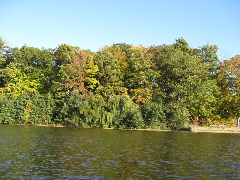 Land for Sale at Lake Macatawa 16.5 Wooded Acres North Shore Drive Holland, Michigan 49424 United States