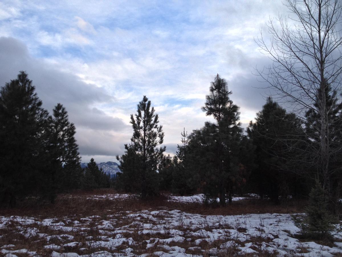 Property Of Beautiful McArthur Lake Area