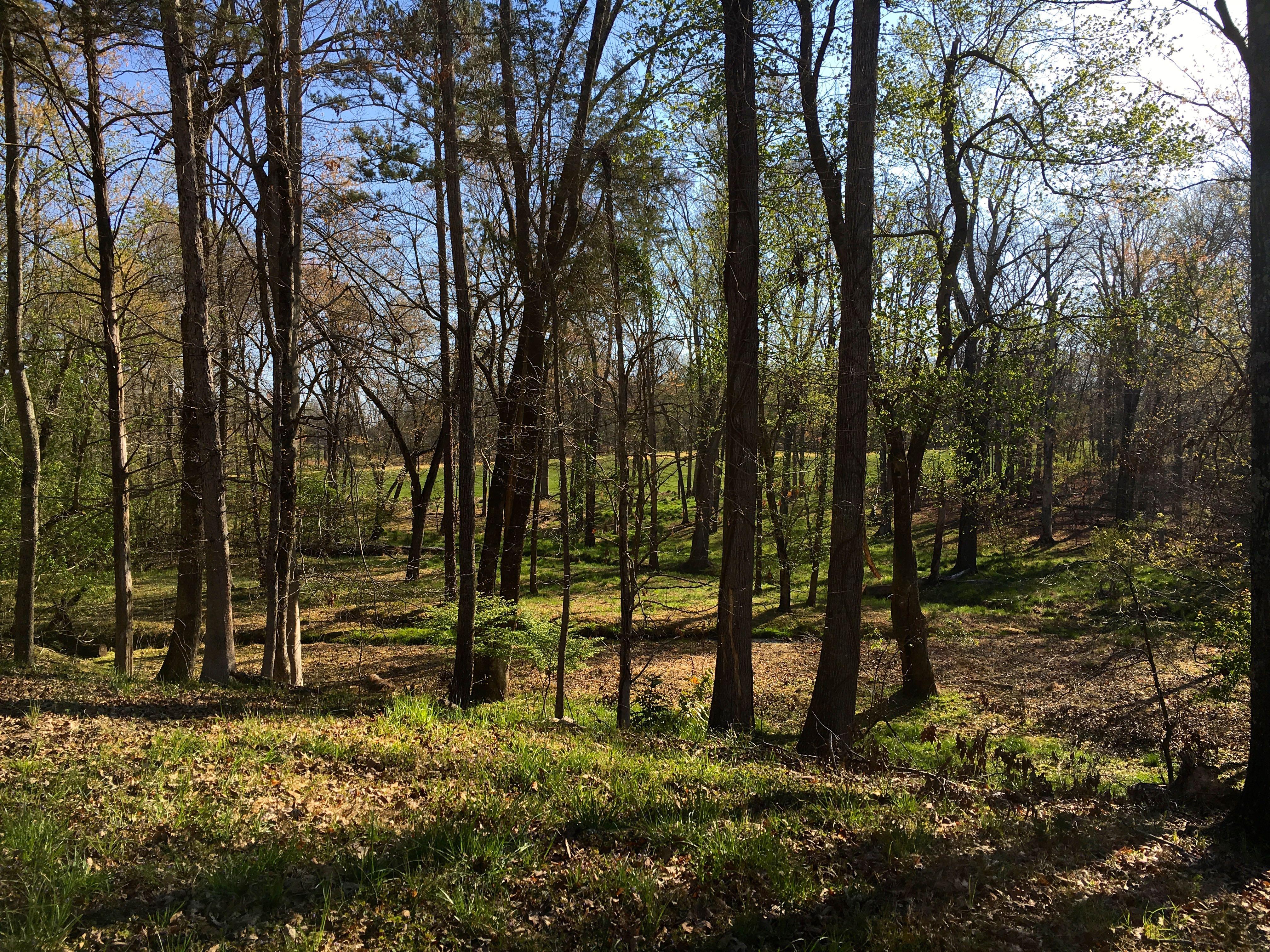 Land for Sale at Lot 4 Keswick Estates Lot 4 Club Drive Keswick, Virginia 22947 United StatesIn/Around: Charlottesville