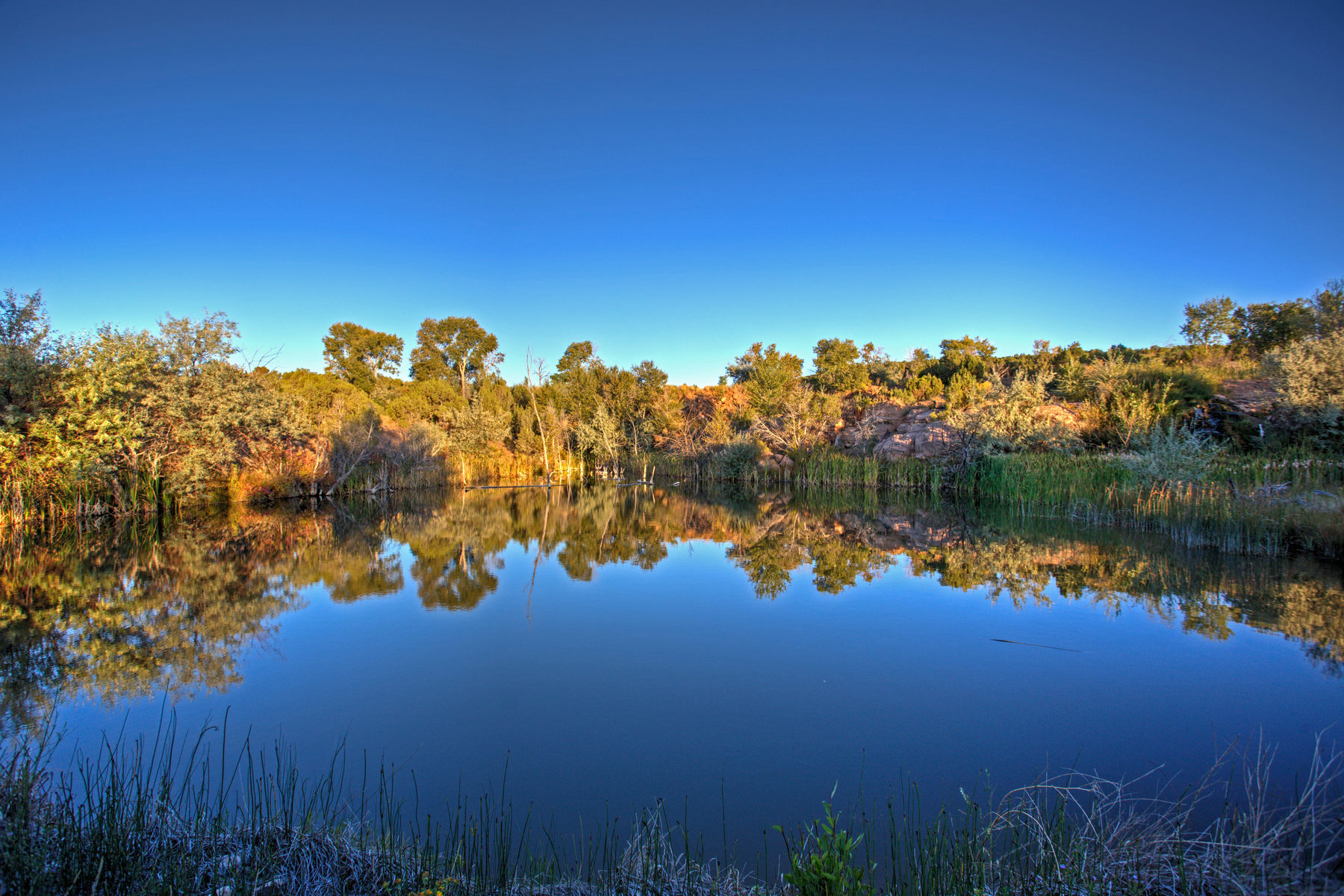 sales property at LC Ranch, Your Fly Fishing & Outdoor Recreational Enthusiast's Dream