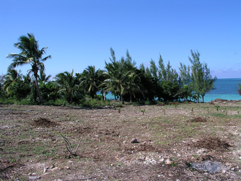 Additional photo for property listing at Ocean Front Lot Russell Island 西班牙维尔斯, 伊路瑟拉 巴哈马