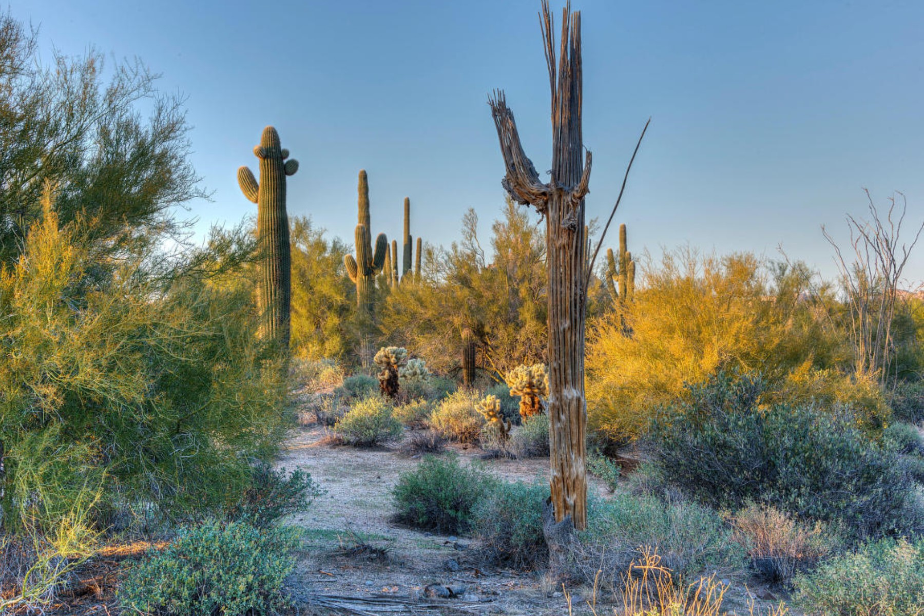 Property Of Fabulous Private 5.81 Acre Custom Homesite with Spectacular Views
