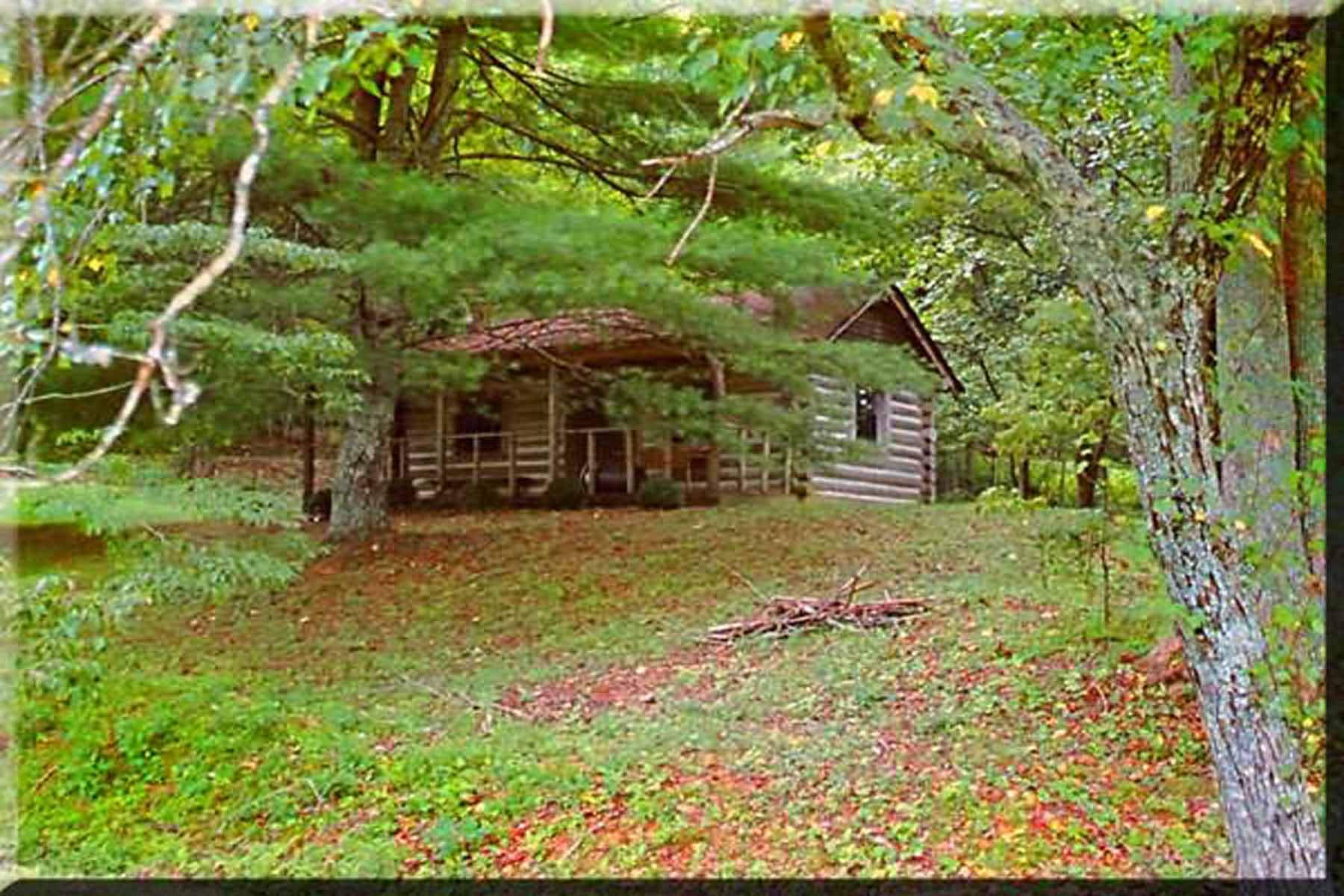 Additional photo for property listing at Find unbound joy at Canaan Valley Farm! 734 Canaan Valley Road Suches, Georgië 30572 Verenigde Staten
