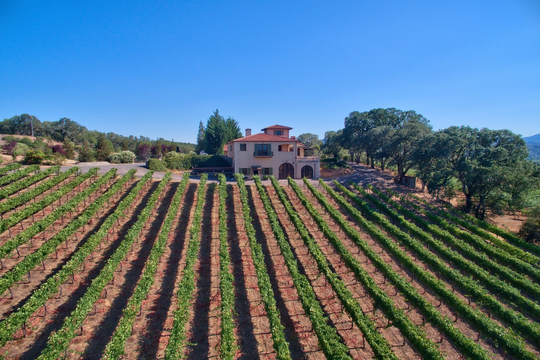 Property For Sale at Ukiah Vineyard Estate