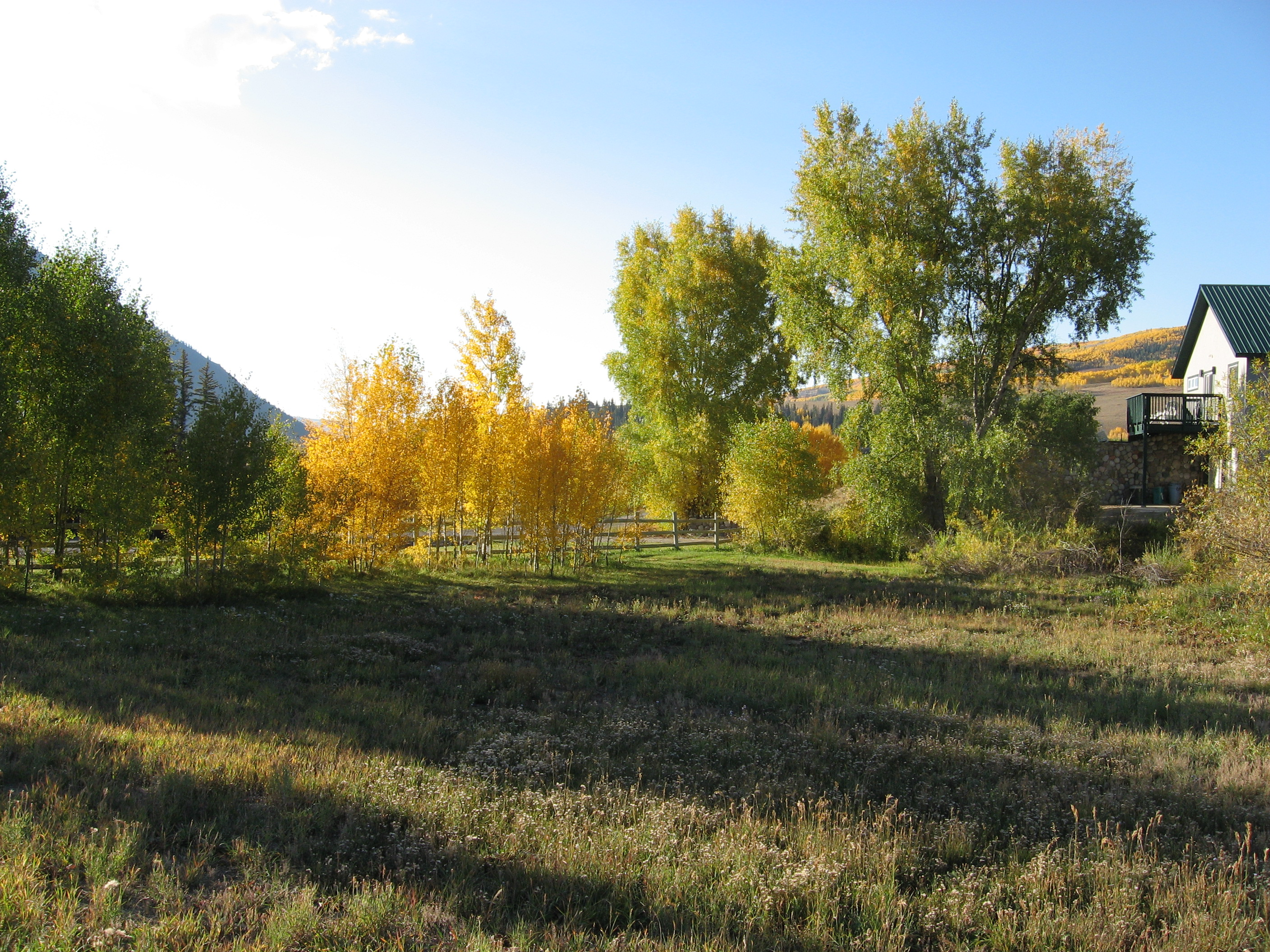 Land for Sale at Convenient Location 147 Cement Creek Road Crested Butte, Colorado 81224 United States