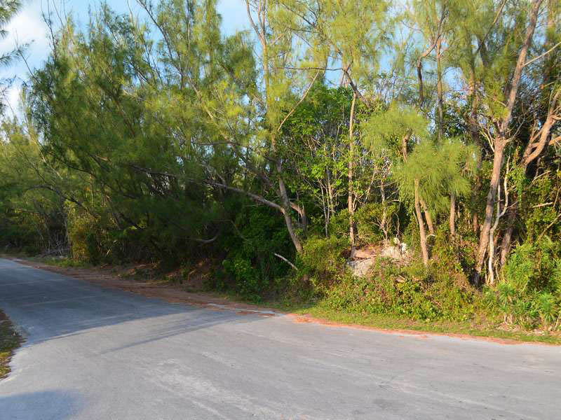 Additional photo for property listing at Lot 19 & 20 Block 160 Treasure Cay, Abaco Bahamas