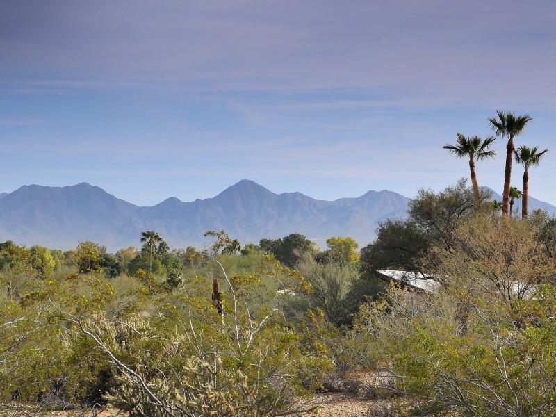 Maison unifamiliale pour l Vente à Very Rare 3.5 Acre Parcel In Paradise Valley 7815 N Ironwood Dr Paradise Valley, Arizona 85253 États-Unis