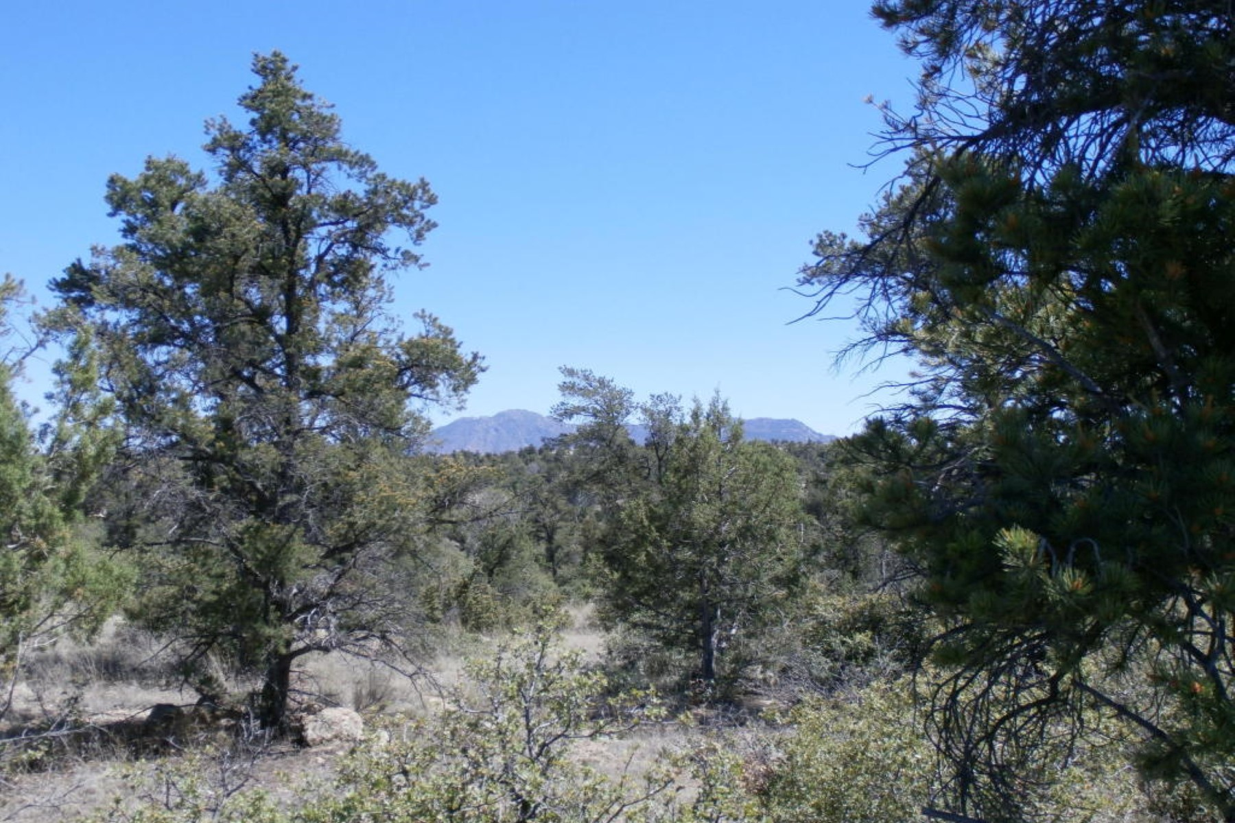Land for Sale at One acre lot in Talking Rock Ranch with lush vegetation 15185 N Little Diamond Way Prescott, Arizona 86305 United States