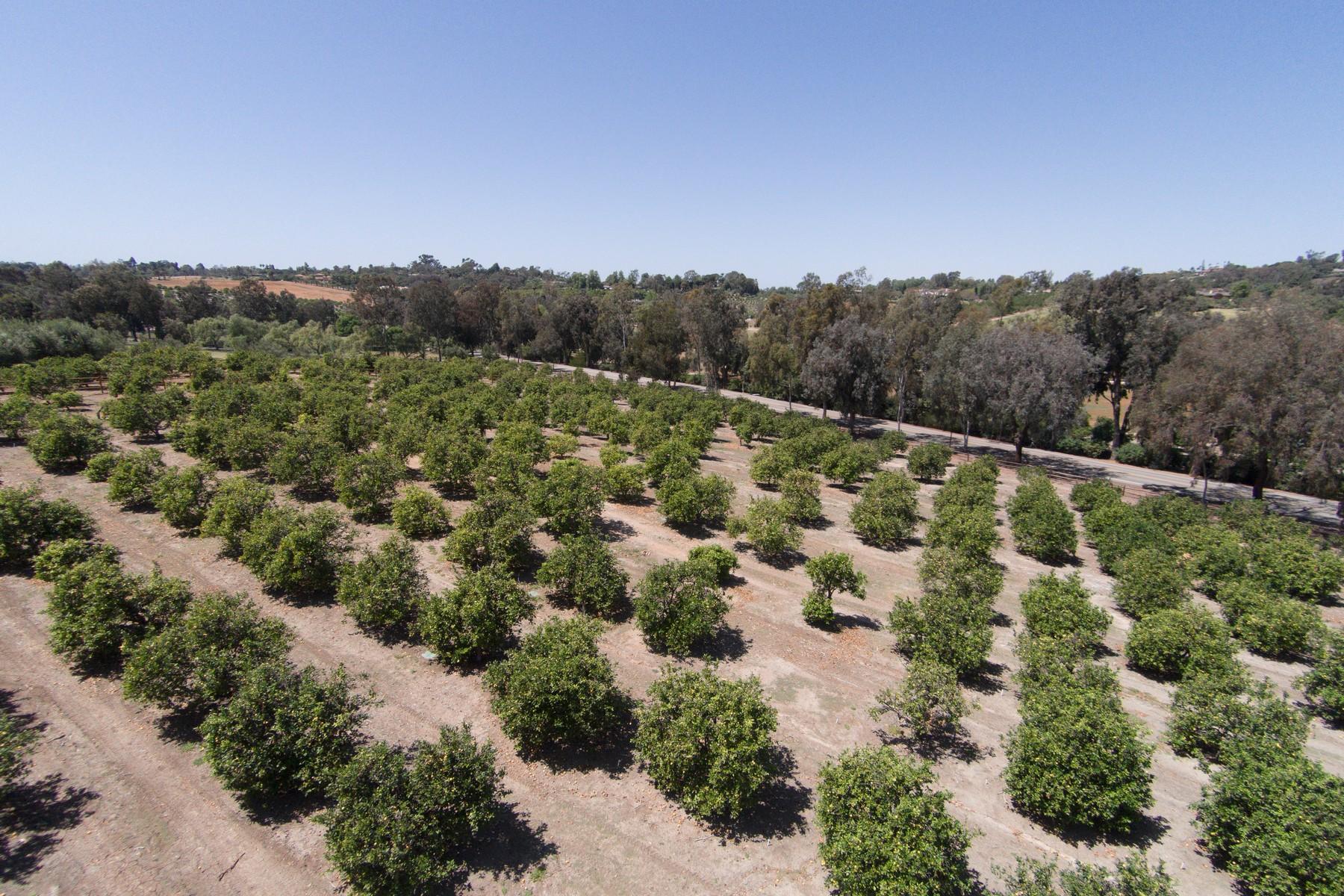 Terrain pour l Vente à APN 07 San Elijo 07 Rancho Santa Fe, Californie 92067 États-Unis