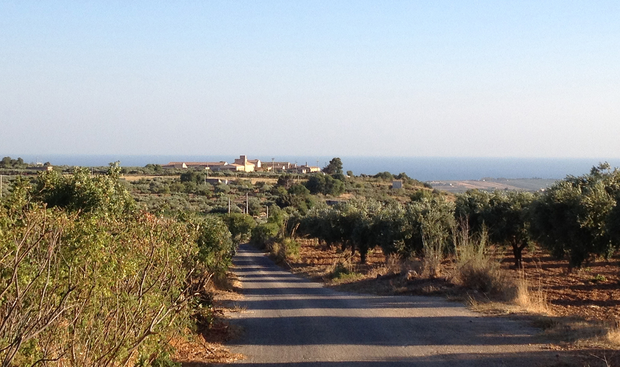 Additional photo for property listing at Formidable exploitation vinicole en Sicile Contrada San Vincenzo Menfi, Agrigento 92013 Italie