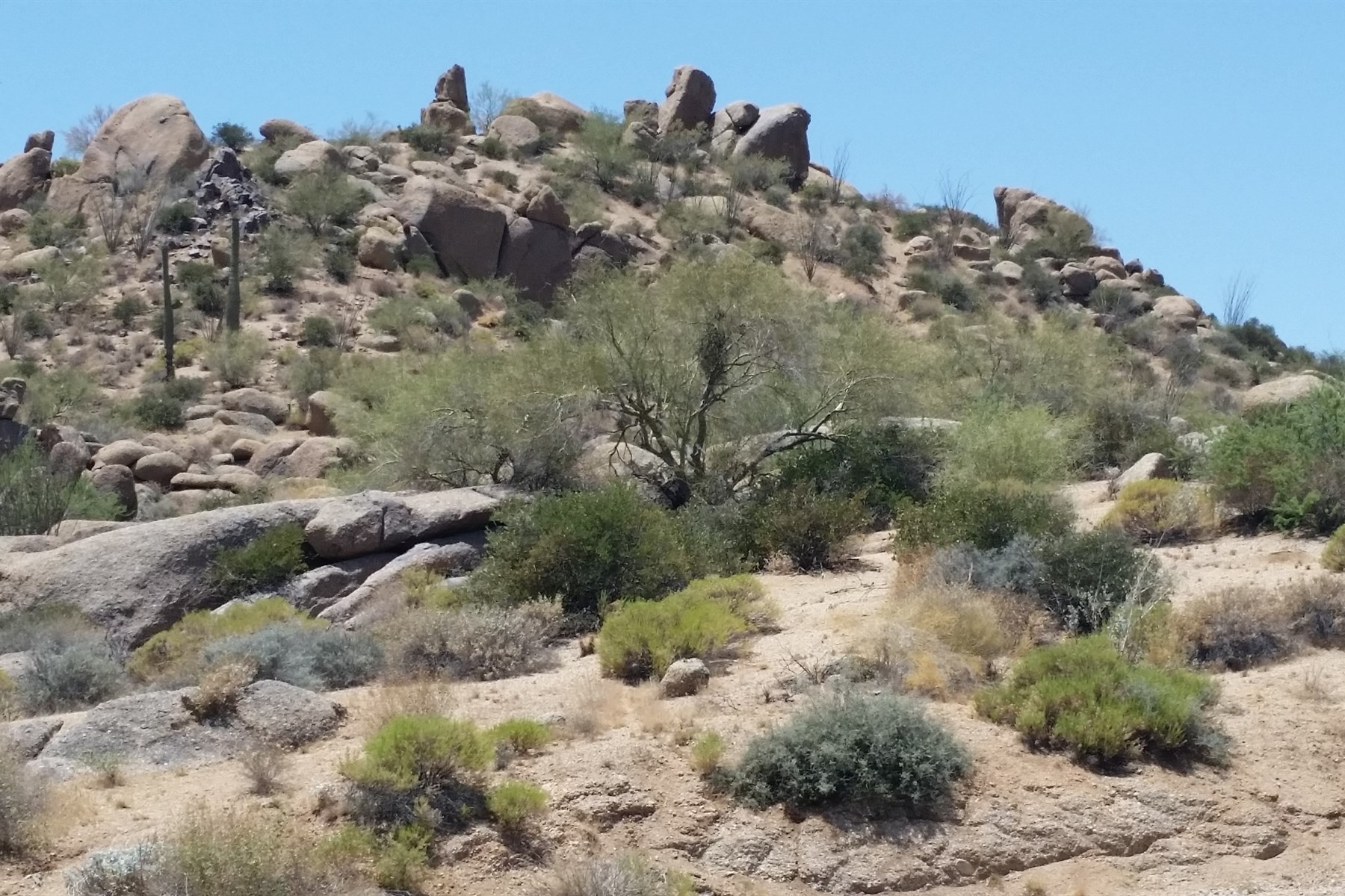 Land for Sale at A truly unique hillside lot in Troon North. 10671 E Hedgehog PL 5 Scottsdale, Arizona 85262 United States