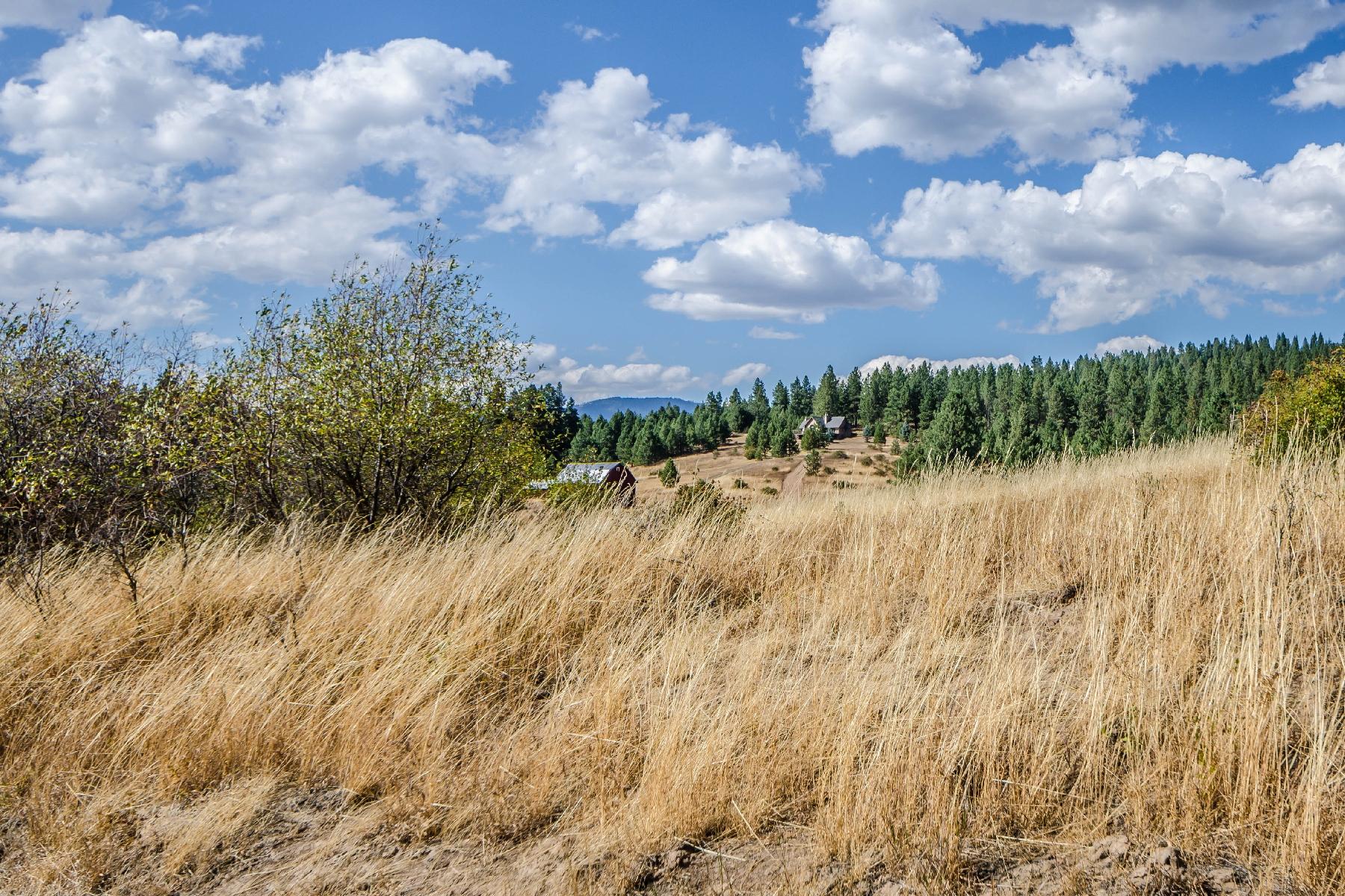 Частный односемейный дом для того Продажа на Incredible property with beautiful vistas of the surrounding area 14793 W. Frost Road Worley, Айдахо 83876 Соединенные Штаты
