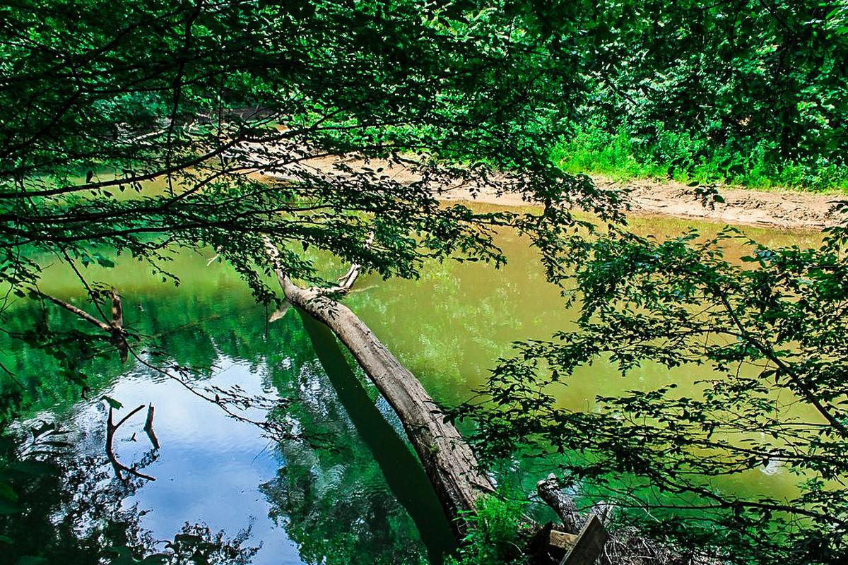 토지 용 매매 에 Magnificent Riverfront Lot 23 River Crest Parkway Rutherfordton, 노스캐놀라이나 28139 미국