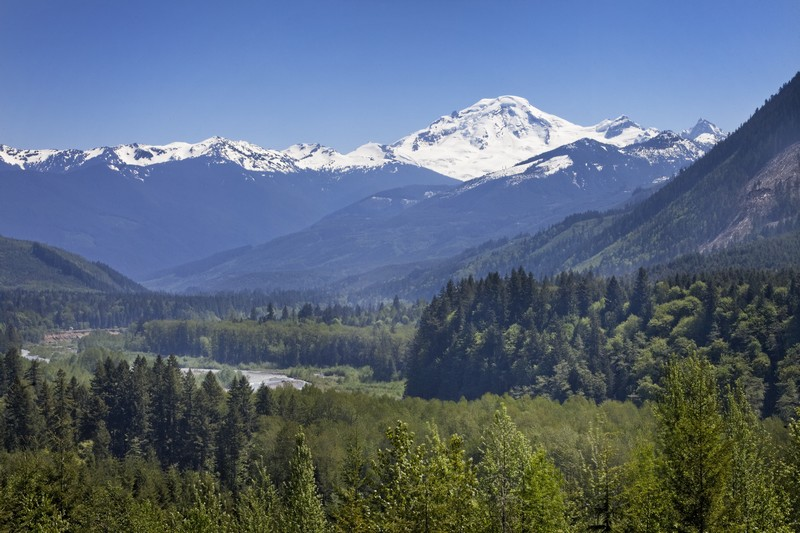 Property For Sale at Mount Baker Residence