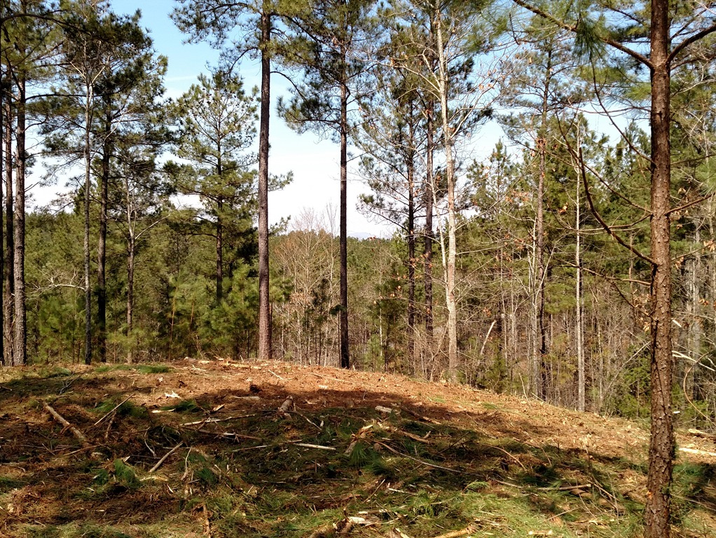 Land for Sale at Large Building Site on Higher Elevation 2-61 The Cliffs At Keowee Springs, Six Mile, South Carolina 29682 United States