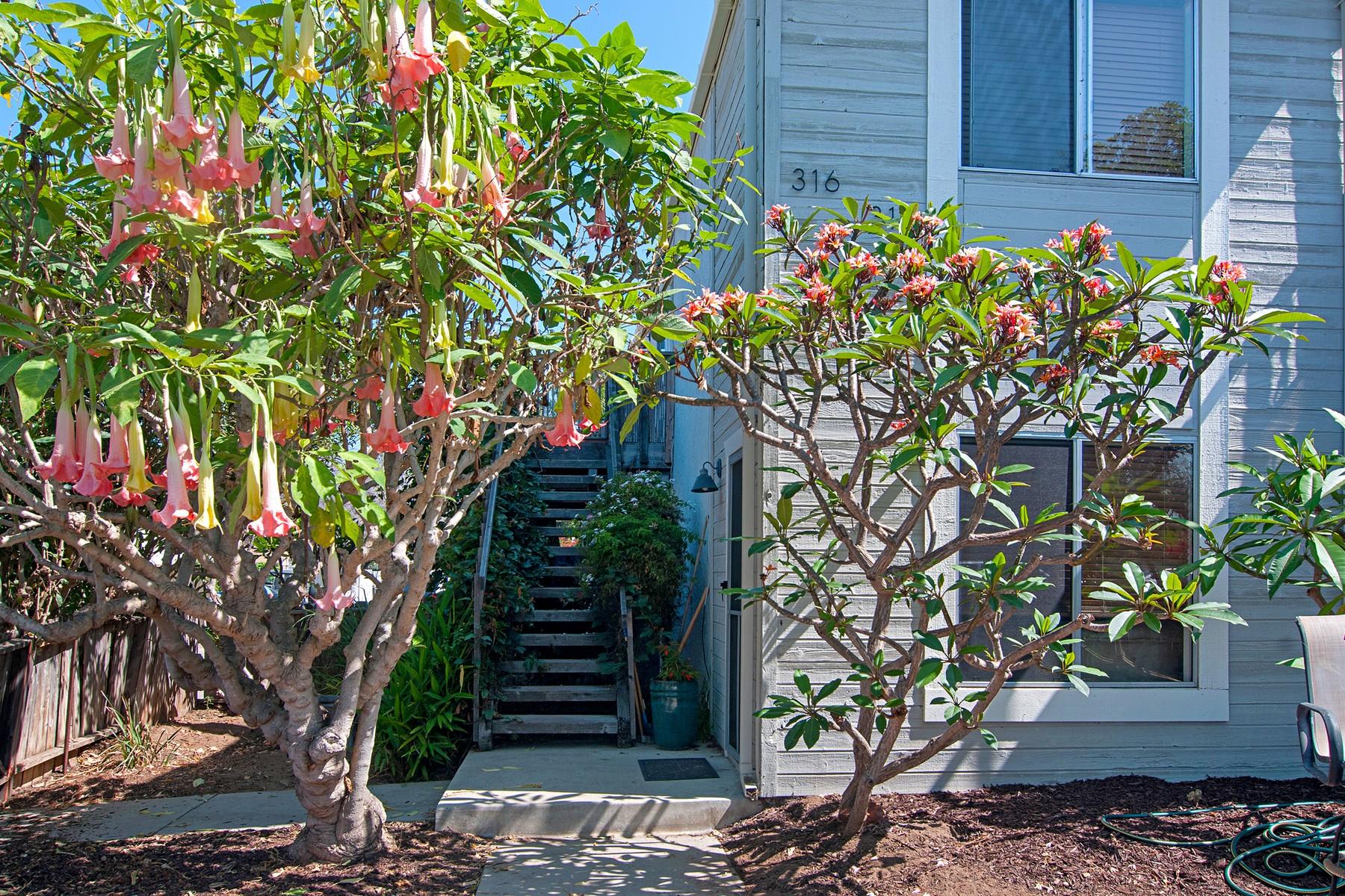 Casa Multifamiliar por un Venta en 314-316 A Street Encinitas, California 92024 Estados Unidos
