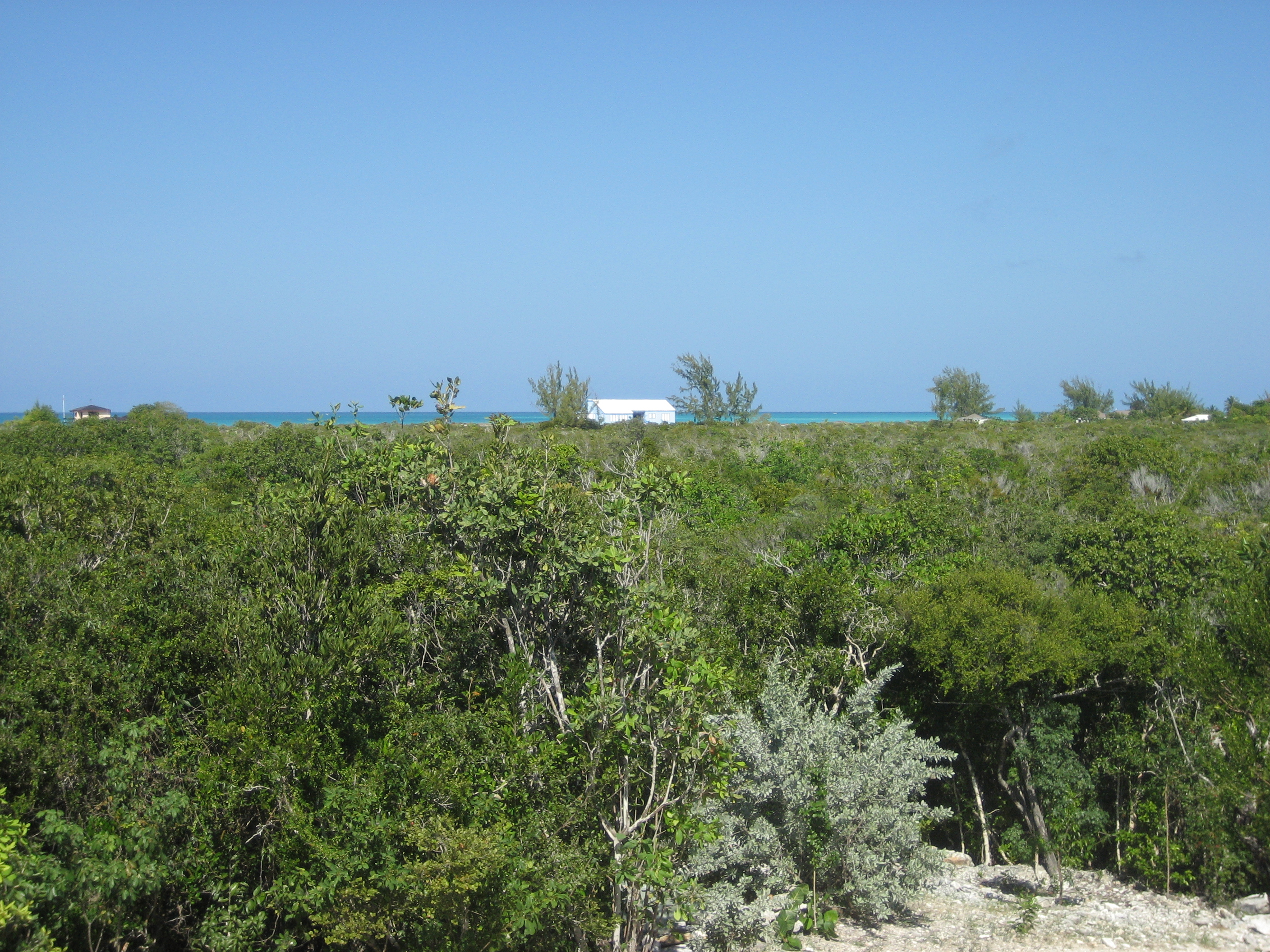 Additional photo for property listing at Pine Cay Land Gardenview Pine Cay, Pine Cay TCI Теркс И Кайкос