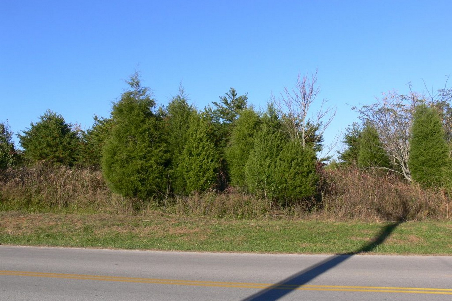 Terreno por un Venta en Perfect Corner Lot To Build Your Dream Home Gohi Trail Lot #17 Vonore, Tennessee, 37885 Estados Unidos