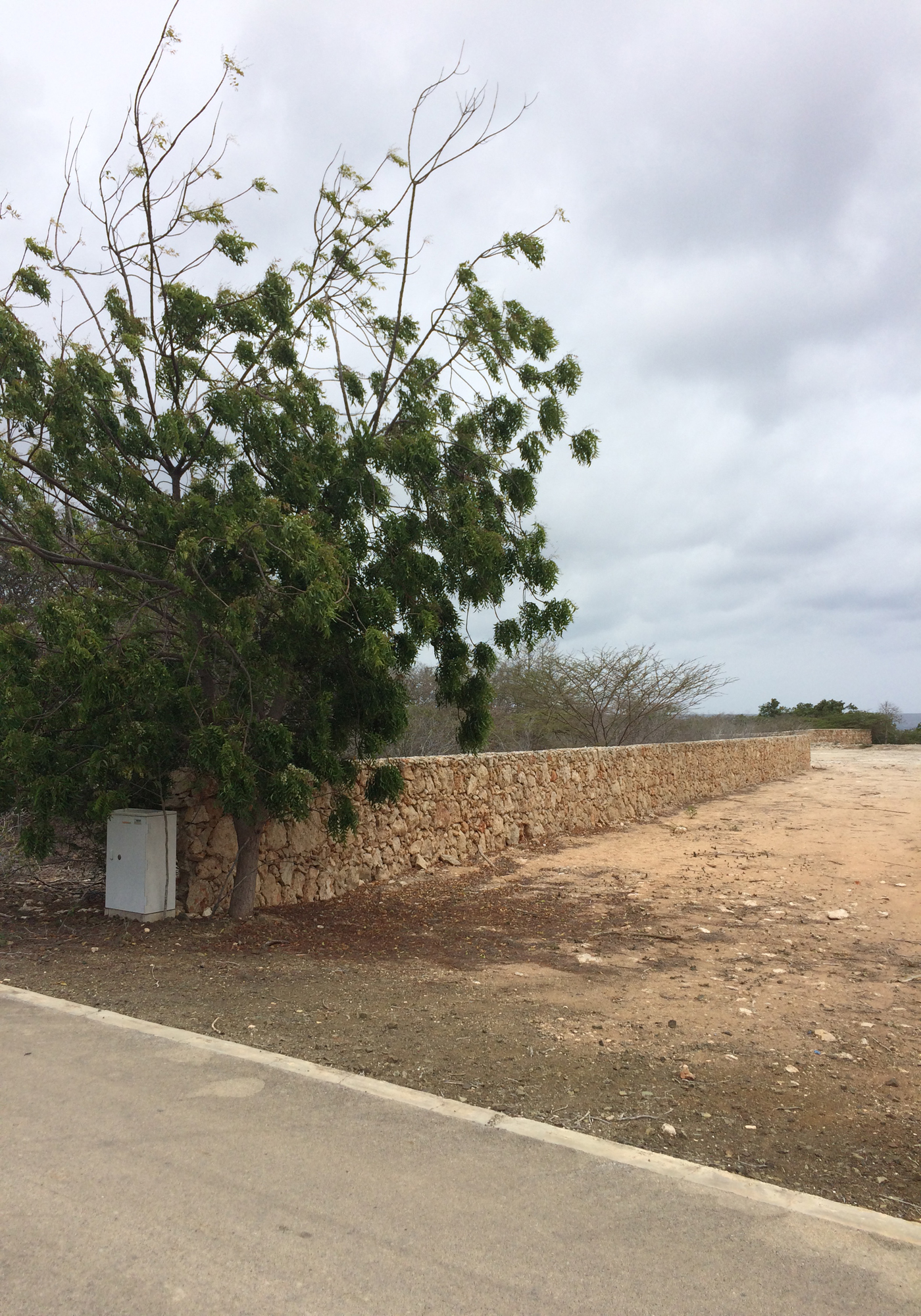 Additional photo for property listing at Crown Keys 20 Sabadeco,  Bonaire