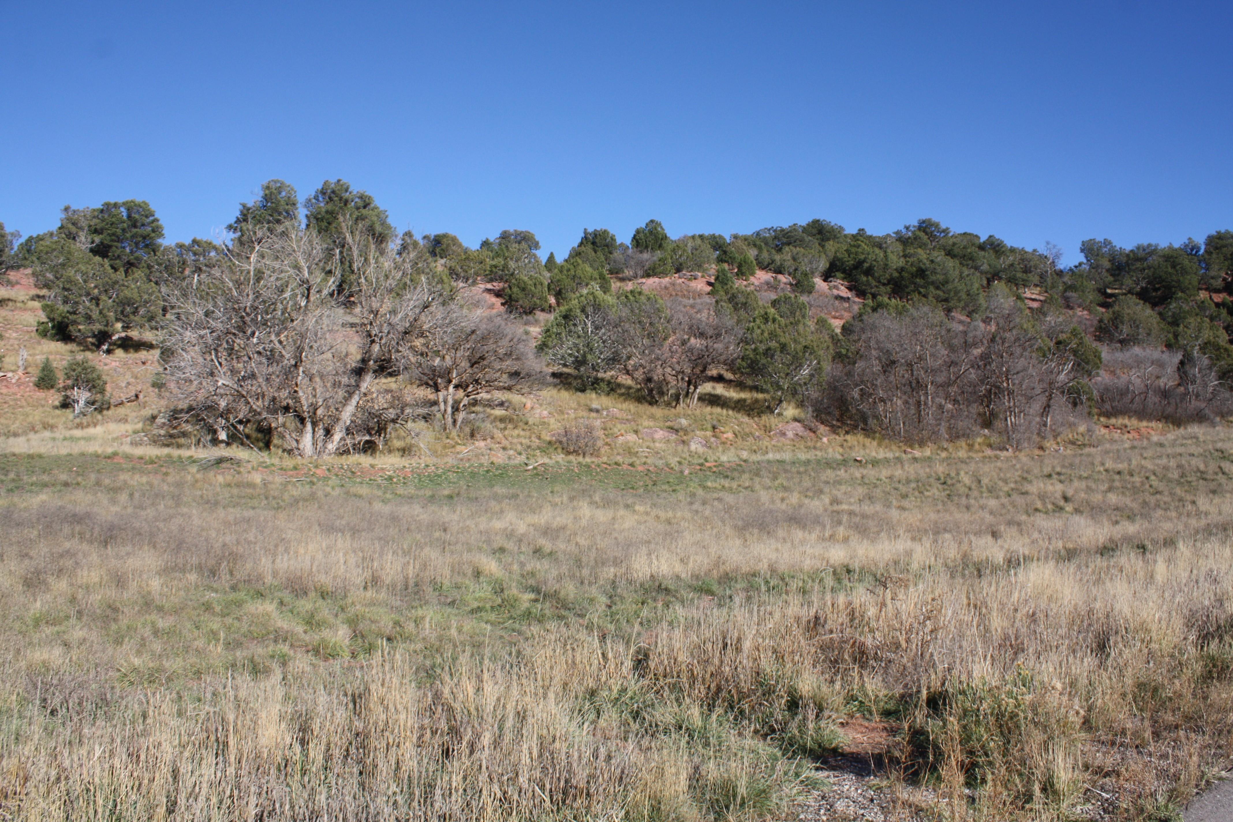 Land for Sale at Lot 73 Springridge Reserve Lot 73 Hidden Valley Glenwood Springs, Colorado, 81601 United States