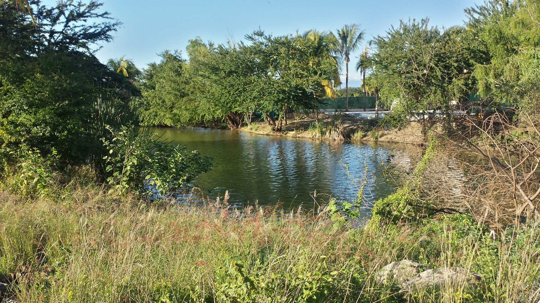 Additional photo for property listing at Residential Lot, 18 Isla Guacamayas, El Tigre Golf Course, Nuevo Vallarta Lote 18 Isla Guacamaya El Tigre Nuevo Vallarta, Nayarit 63735 Mexico