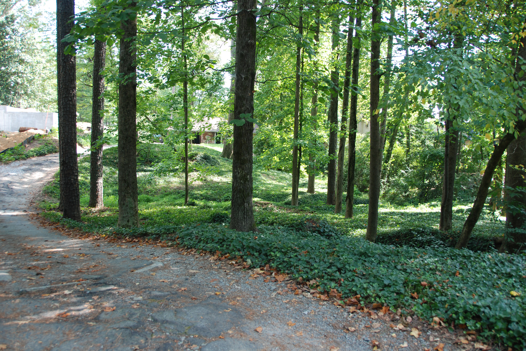 Property For Sale at Over Acre Lot Renovation In Buckhead