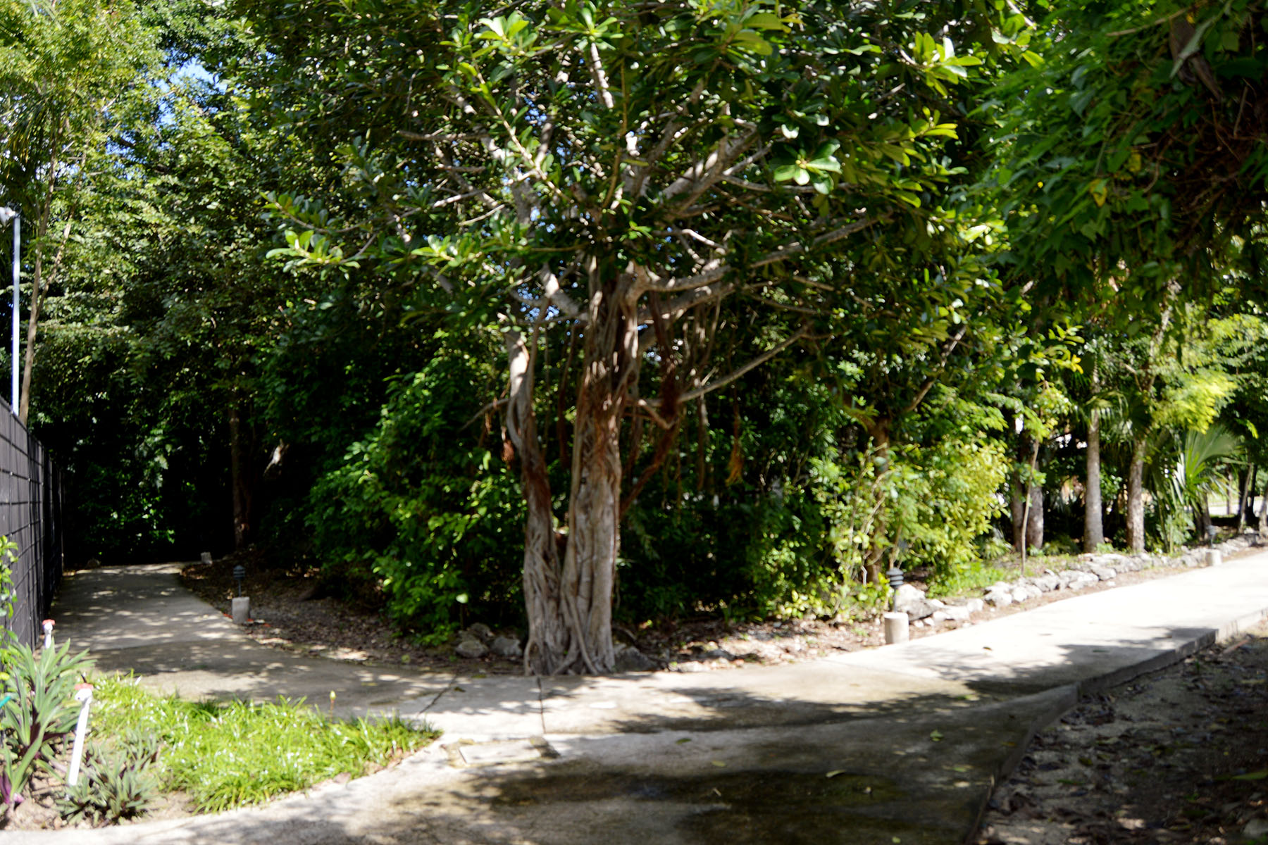 Land for Sale at 181 CLUB REAL RESIDENTIAL LOT 181 Club Real Residential Lot Retorno Copan Playa Del Carmen, Quintana Roo, 77710 Mexico
