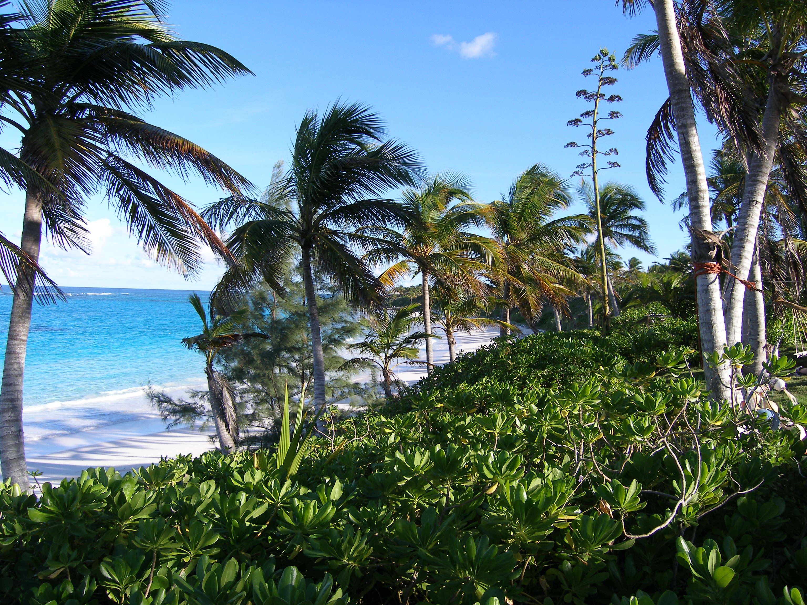 Additional photo for property listing at Breeze Away Estates Governors Harbour, Eleuthera Bahamas
