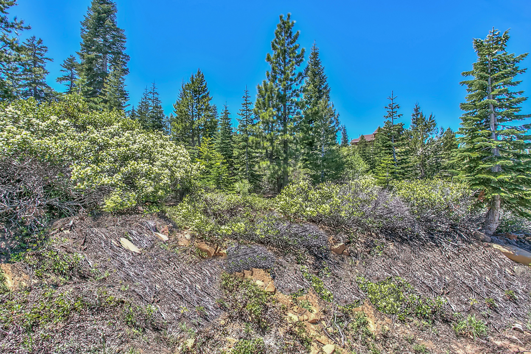 Additional photo for property listing at 15092 Skislope 15092 Skislope Way Truckee, California 96161 United States
