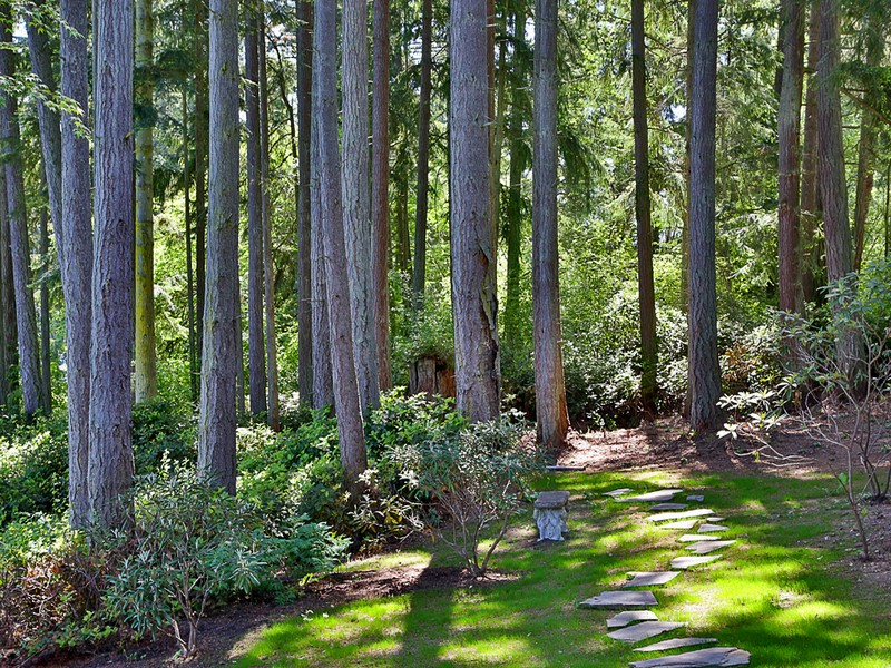 Additional photo for property listing at 3295 Fox Spit Rd  Langley, Washington 98260 United States
