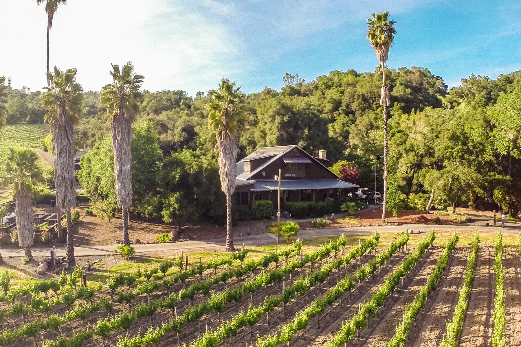 Hacienda / Granja / Rancho / Plantación por un Venta en Crazy Creek Vineyard 2350 Geysers Road Geyserville, California, 95441 Estados Unidos